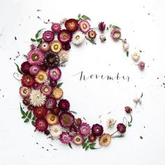 """Hello November. Here's to a good one x #hellonovember #november"""