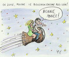 La mouche Ducoche: (2015-12-31) Bonne année 2016 !