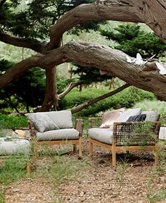 a1727120850 hutt from Eco living Outdoor Dining Chairs