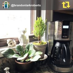 Every good day begins with coffee.   Tag your #MrCoffeeMoments on Instagram and we'll share our favorites!  📷 | brandonlarkroberts Girls Near Me, Coffee Love, Drip Coffee Maker, Good Day, Tags, Instagram, Good Morning, Hapy Day, Coffee Maker Machine