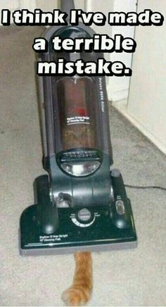 There are very few cleaning emergencies we aren't able to fix. #lol