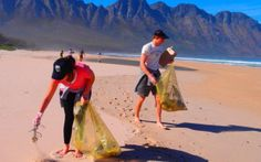 Beach Cleanup (take Clean Streets to the ocean). And then get warm at Beach Chalet Brewery. Dive Shop, Scuba Diving Gear, How To Get Warm, Cape Town, A Team, Brewery, Swimming, Ocean, Events