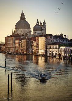 "allthingseurope: "" Venice, Italy (by Shahid Ali Khan) """