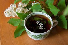 Травяной чай Moscow Mule Mugs, Pudding, Tableware, Recipes, Food, Flan, Dinnerware, Puddings, Dishes
