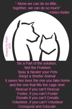 Be the solution, get those pets fixed!    Spay, neuter, adopt, shelter, foster, transport.  Donate.