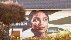 A mural in Mendocino California - we are a nation founded by immigrants Mendocino California, Mount Rushmore, Superhero, Mountains, Nature, Fictional Characters, Art, Art Background, Naturaleza
