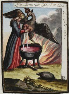 Federico Gualdi | Philosophia hermetica. Compendiolum de praeparatione auri potabilis veri | Beinecke Rare Book & Manuscript Library, ca.1790