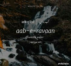 Urdu Words With Meaning, Allama Iqbal, Word Of The Day, Meant To Be, Instagram, Koi, Twitter