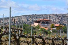 Wine, vi, vino. Gratallops, Priorat/