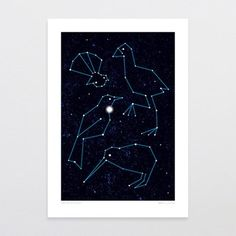 NZ$ 49.00 Natives By Night. Our native birds in the night sky.