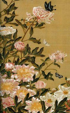 イメージ 2 ito jakuchu(1765-1766)