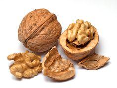 Cerneaux de noix issus de l'agriculture biologique sont séparés en deux parties sensiblement égales et intactes.