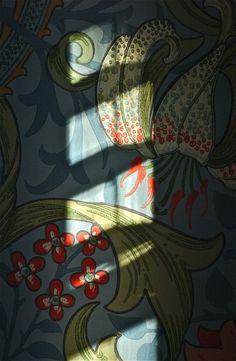 Wallpaper detail; Wyncote, Pennsylvania, USA. February 2013.