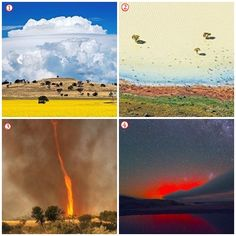 What is the world Down Under? Incredible pictures of Australia