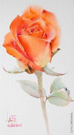 Watercolor Video, Watercolor Rose, Watercolor Cards, Plant Drawing, Painting & Drawing, Drawing Flowers, Art Paintings, Watercolor Paintings, Watercolors