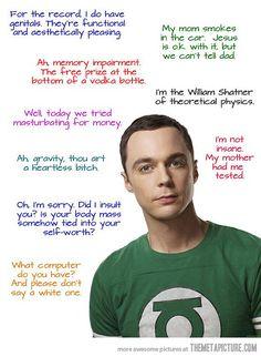 funny-Sheldon-Cooper-quotes-science.jpg (540×737)