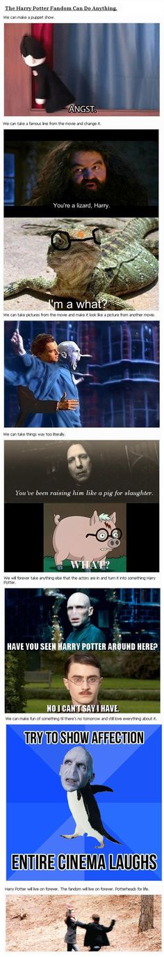 Potter heads are able to do different things because we are wizards