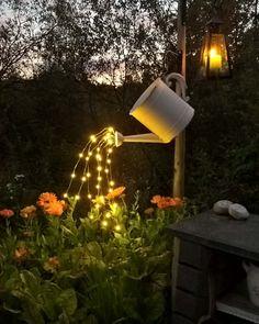 Kasvit valosuihkussa