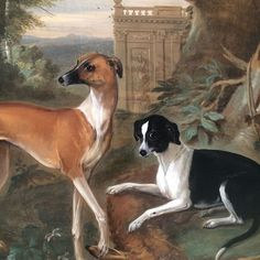 Meet Gill and Die the 2nd Earl of Oxford's dogs. Currently on display in The Portland Collection. Painted by John Wootton in 1715, Edward Harley was Wootton's main patron and commissioned over 40 paintings from him. #johnwootton #harleygallery #portlandcollection