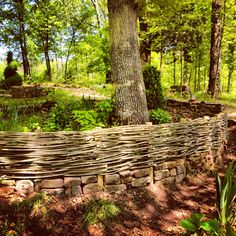 "I make 2' border fences each spring with last years apple sticks/suckers-it is a living fence, as small leaves will grows. I do mine on a 60 degree angle. I stick them in the dirt, working to the right. Then I work back to the left, the sticks going the opposite way. KDub. From: Nick McCullough's Board ""Fences / Gates / Screens ("