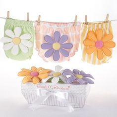 Bunch of Bloomers 3 Bloomers Set