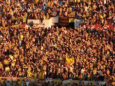 @Peñarol hinchada manya #9ine