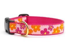 Flower Power Dog Collar