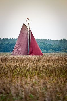 """""""This sailing boat was drifting by on a small canal, not visible to the eye, between several wheat fields. Passing by during a biking trip this created somewhat of a dreamscape: go wherever you want to go."""""""