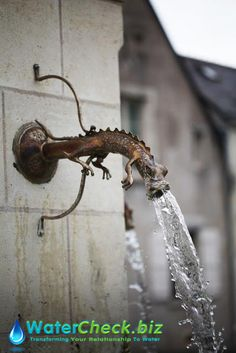 What's going on here? Caption this image. #love #water
