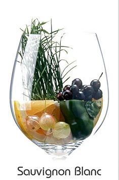 Sauvignon Blanc Aromas