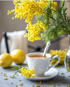 Spring morning the smell of Mimosa Coffee Love, Coffee Art, Coffee Break, Coffee Cups, Tea Cups, Café Chocolate, Pause Café, Yellow Cottage, Good Morning Coffee