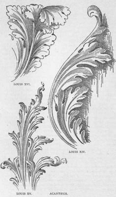 Acanthus leaf drawing.Good Looking Louis Furniture Styles