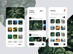 Photographers app designed by Eitan Cohen. Connect with them on Dribbble; the global community for designers and creative professionals. Best Ui Design, App Ui Design, Design Design, Wireframe, Web Design Mobile, Ui Design Inspiration, Ios App, Mobile App, User Interface