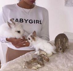 Untitled // Bunnies