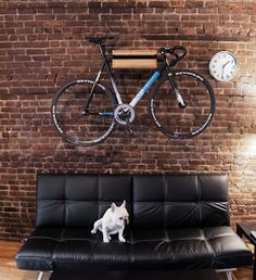 Bike and office dog