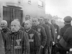 Jehovah's Witnesses bearing the 'Purple Triangle' at the Sachsenhausen camp, north of Berlin