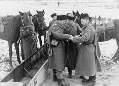 """TRAITORS OF THEIR COUNTRY. A group of Cossacks, voluntarily referred by the service and the Führer of Germany. The USSR. 1942""""... In Crimea to the Red Army were 90 thousand. persons, including 20th. the Crimean Tatars. almost all of the 20th. Crimean Tatars deserted in 1941 year from 51 army retreat from Crimea. """" Joseph Stalin."""