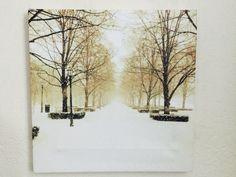 KC Snow with Parisian Flare  https://squareup.com/market/oceans-of-wisdom-photography