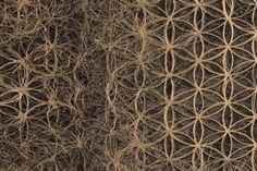 Transnatural Art & Design - Balancing Nature & Technology - REGENERATION    #REGENERATION  #Transnatural