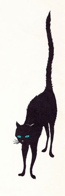 () Blue-Eyed Black Cat () by Lillie Patterson (Author), Gil Miret (Illustrator) I Miss My Cat, Cat Love, Neko, American Curl, Cat Applique, Black Cat Art, Halloween Silhouettes, Little Kittens, Baby Cats