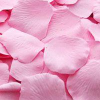 Silk-Rose-Petals-in-Cotton-Candy-100-Piece-Bag_thumbnail-1.gif
