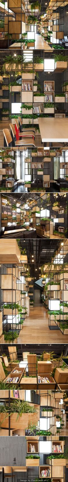 PENDA - Modular shelves & planters - Wooden box shelves and planters and light cubes populate a gridded metal framework