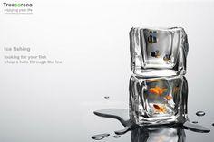 cube fish tank