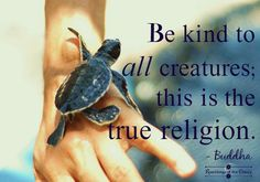 Be kind to all creatures; this is the true religion. Buddha