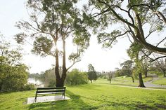 Yarra Trail #park #garden #greenery #scenicview #Melbourne #amityapartments #southyarra