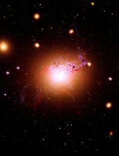 """NGC 1275 o Perseus A è una Galassia di Seyfert nella costellazione di Perseo, che consiste in due galassie: una centrale e un  """"sistema ad alta velocità"""" che le gira intorno a 3000 km/s. La galassia centrale contiene filamenti di gas di un milione di volte la massa del nostro Sole, estesi fino a 20 000 anni luce. Poiché sono più freddi rispetto alle nubi intergalattiche circostanti, non si capisce come siano esistiti per almeno 100 milioni di anni, senza mai collassare in stelle o…"""