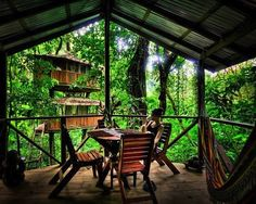 Rain Forest Treehouse Community on Costa Rica (17 pictures)
