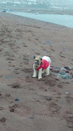 Beach feb 15