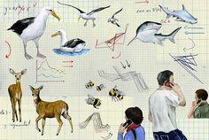 Christine Berrie Illustration