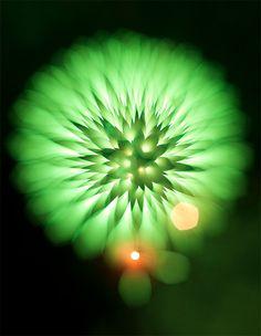 Fireworks - Photography by David Johnson